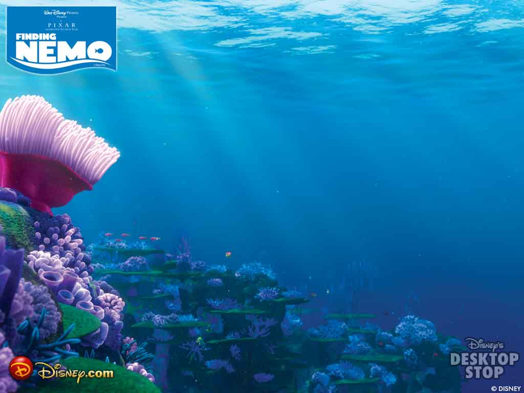 finding nemo 1024x768 photo or wallpaper